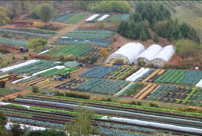 Pesticide free                               agriculture, e.g. on Singing Frogs Farm of                               Mr. Paul Kaiser in California
